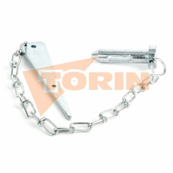 Cap for inclined seat check valve 3