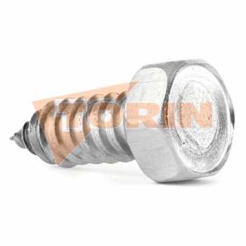 Blank cover TW male coupling MK 80 stainless steel